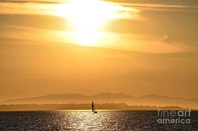 Crescent Beach Sailboat Summer Sunset Poster by Turtle Shoaf
