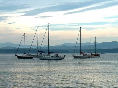 Sailboats Docked Poster