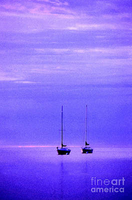 Sailboats In Blue Poster by Timothy Johnson