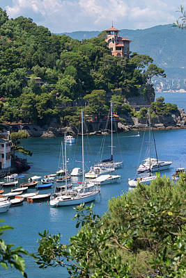 Sailboats In Portofino Poster