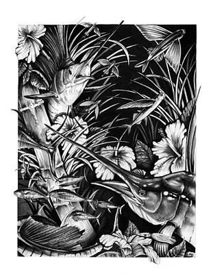 Sailfish Collage Poster