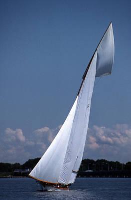 Sailing Elegance Poster by Skip Willits