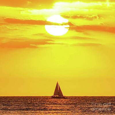 Poster featuring the photograph Sailing In Hawaiian Sunshine by D Davila