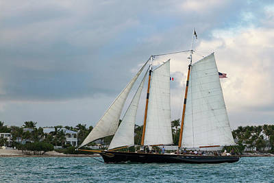 Poster featuring the photograph Sailing In Key West At Dusk by Bob Slitzan