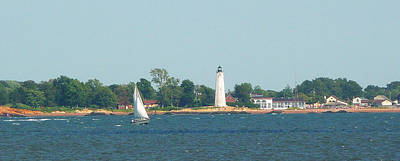 Poster featuring the photograph Sailing New Haven by Margie Avellino