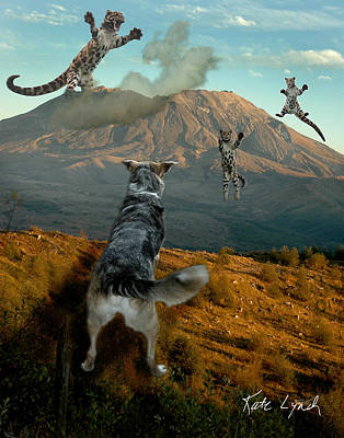 Saint Helens Cats Poster