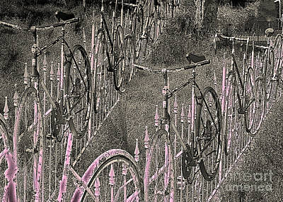 Salado / Bicycles On The Fence 2 Poster