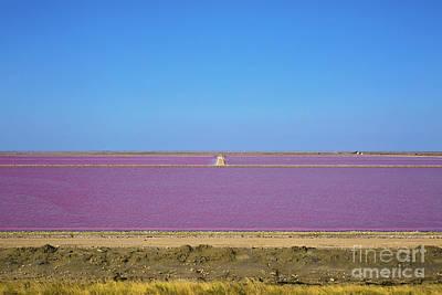 Salt Marsh In Salin-de-giraud 3 Poster by Maria Bobrova