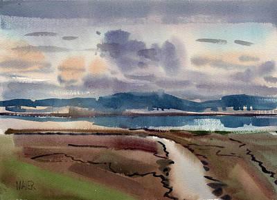 Salt Marsh On San Francisco Bay Poster by Donald Maier