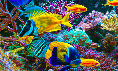 Saltwater Fish Collection Poster