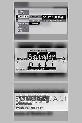 Salvador Dali Nymoma Series Poster by Leon Gorani