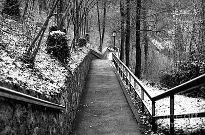 Salzburg Nature Path Poster by John Rizzuto