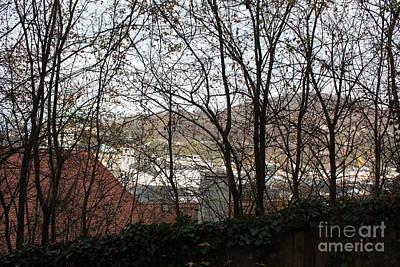 Salzburg Through The Trees Poster by Joan Sharron