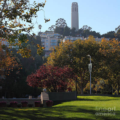 San Francisco Coit Tower At Levis Plaza 5d26217 Square Poster by Wingsdomain Art and Photography