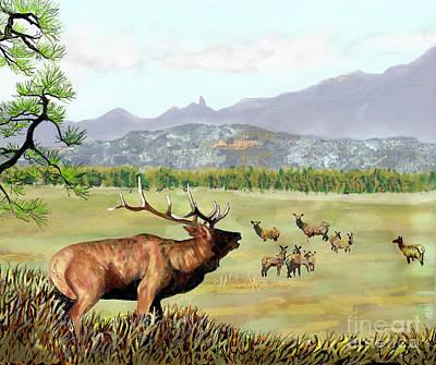 San Juan Elk Vista Poster