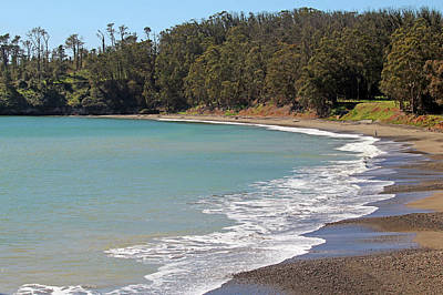 Poster featuring the photograph San Simeon Cove by Art Block Collections