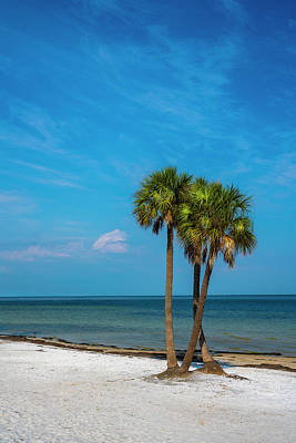 Sand And Palms Poster by Marvin Spates