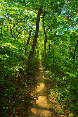 Sand Cave Trail Poster by Phil Koch