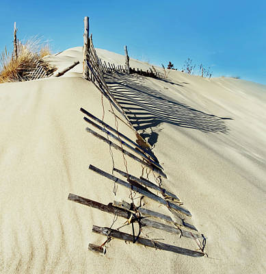 Sand Dune Fences And Shadows Poster