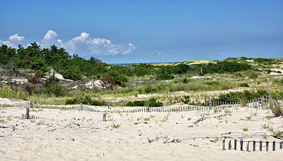 Sand Dune In Cape Henlopen State Park - Delaware Poster by Brendan Reals