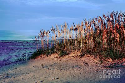 Sand Dune Sea Oats Sunrise Outer Banks Poster by Dan Carmichael