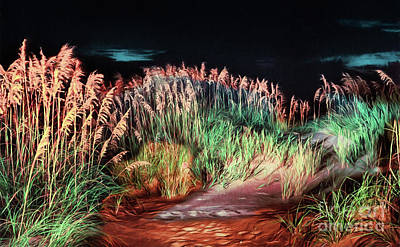 Sand Dunes At Night On The Outer Banks Ap Poster by Dan Carmichael