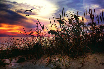 Sand Dunes At Sunset - Cape Cod Poster
