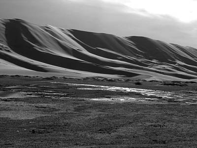 Sand Dunes Of The Gobi Poster by Diane Height