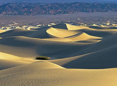 Sand Dunes Sunrise Poster