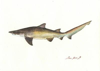 Sand Tiger Shark Poster