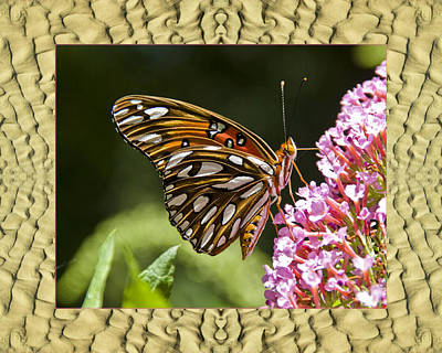 Poster featuring the photograph Sandflow Butterfly by Bell And Todd