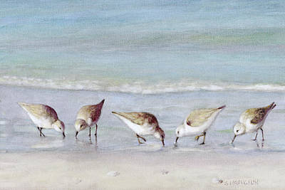 5 Sandpipers On Siesta Key Beach Poster by Shawn McLoughlin