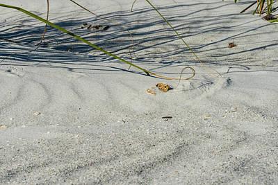 Sandscapes Poster