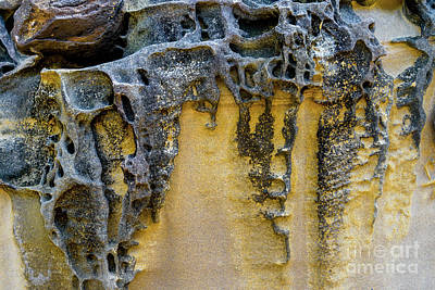 Poster featuring the photograph Sandstone Detail Syd01 by Werner Padarin