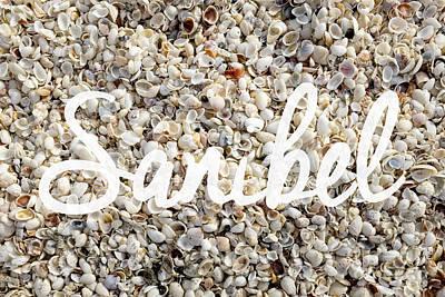 Sanibel Island Seashells Poster by Edward Fielding