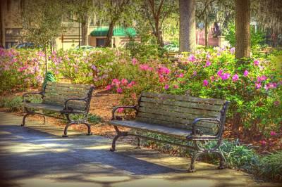 Savannah In Springtime Poster by Linda Covino