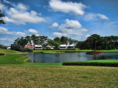Sawgrass 17th Hole Poster by Judy Vincent