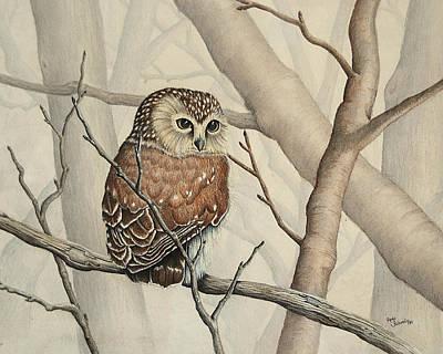 Sawhet Owl Woods Watcher Poster by Renee Forth-Fukumoto