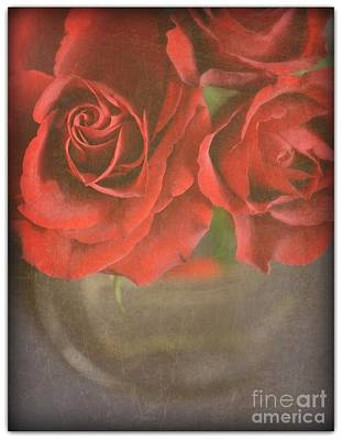 Poster featuring the photograph Scarlet Roses by Lyn Randle