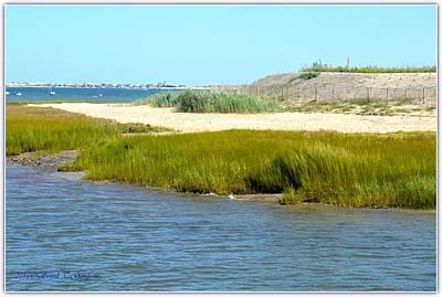Scenic Cape Cod Poster