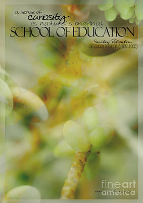 School Of Curiosity 02 Poster