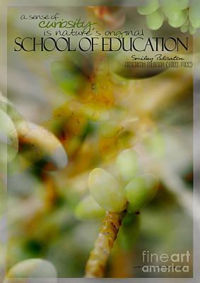 School Of Curiosity 04 Poster