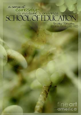 School Of Curiosity 05 Poster
