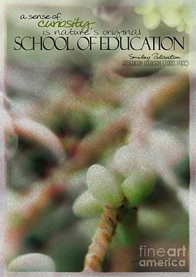 School Of Curiosity 09 Poster
