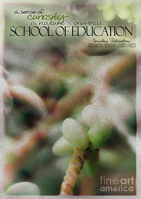 School Of Curiosity 11 Poster