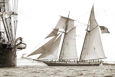 Schooner Lynx Full Sail Poster by Dustin K Ryan