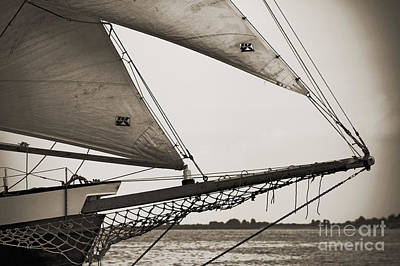 Schooner Pride Tall Ship Charleston Sc Poster by Dustin K Ryan
