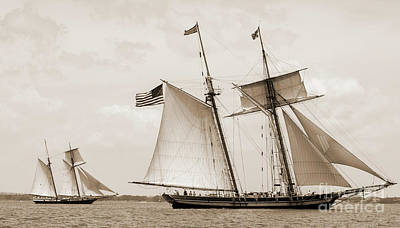 Schooners Pride Of Baltimore And Lynx Poster by Dustin K Ryan