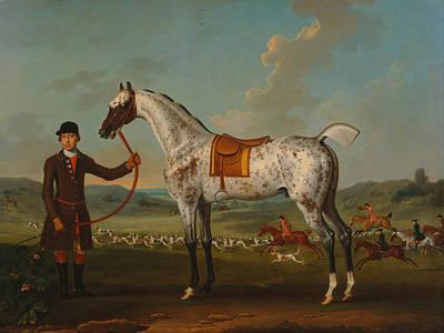 Scipio - A Spotted Hunter - Property Of Colonel Roche  Poster by Mountain Dreams