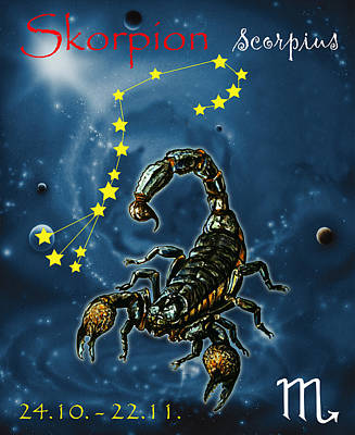 Scorpius And The Stars Poster